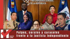 Pulpos, corales y caracoles frente a la justicia independiente